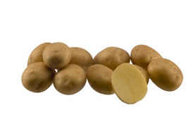 madeleine potato tuber